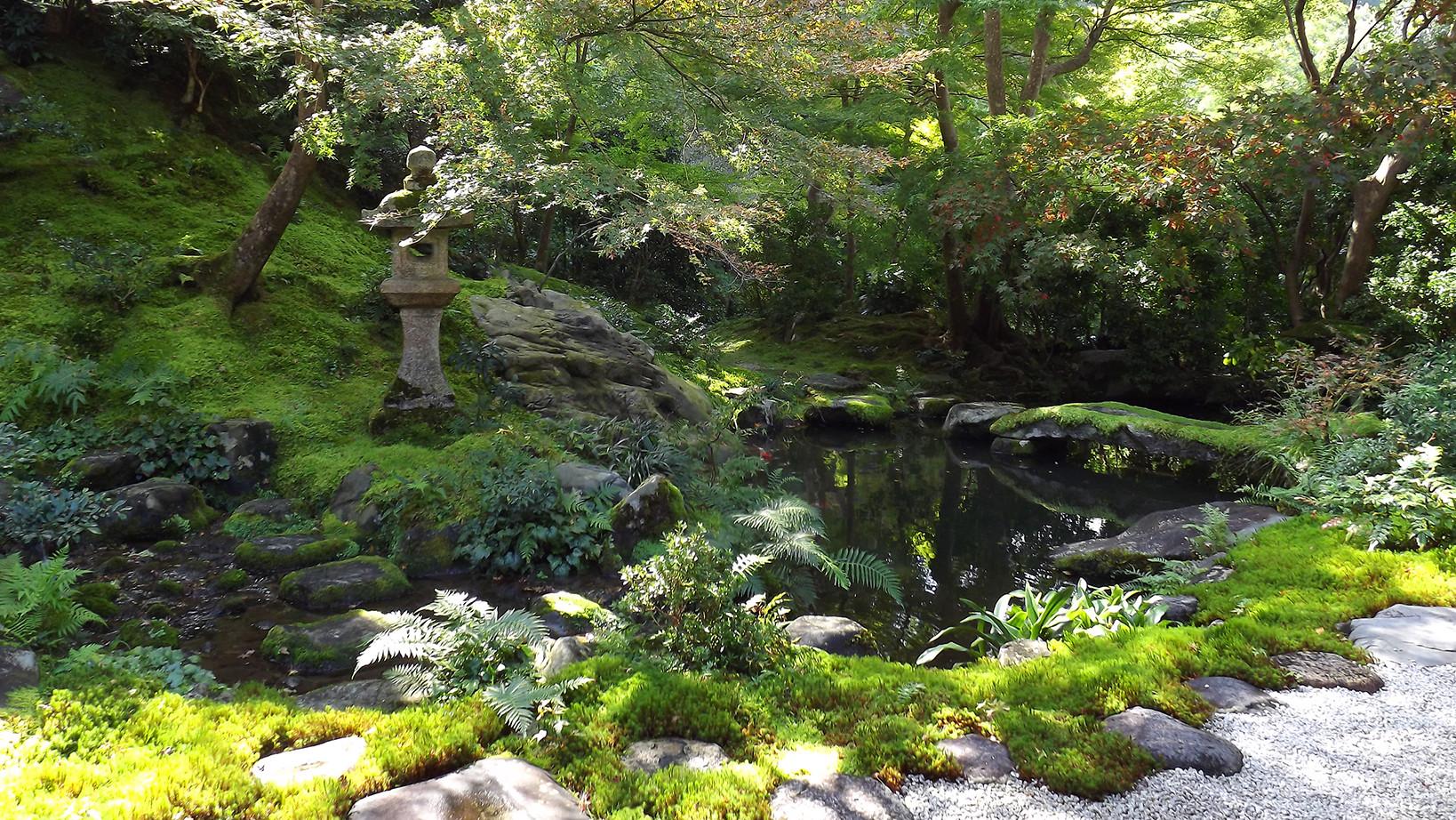 niwaki et niwashi - outils japonais de taille pour le jardin ...